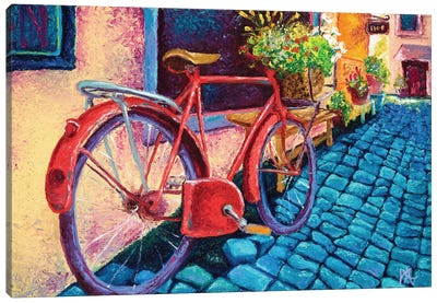 Cobblestone Path Canvas Art Print