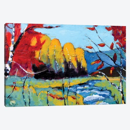 High Country Canvas Print #KIP109} by Kip Decker Art Print