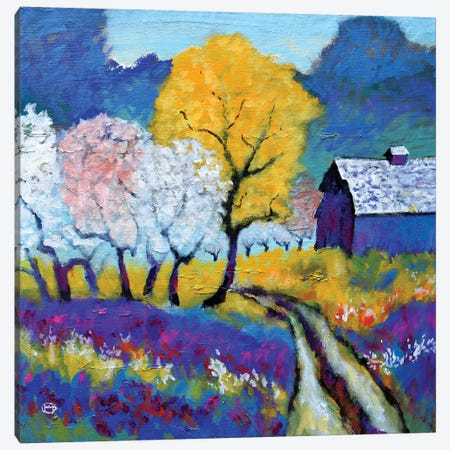 Thompson's Road Canvas Print #KIP118} by Kip Decker Canvas Wall Art