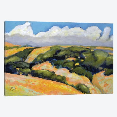 Clouds On Summer Hills Canvas Print #KIP11} by Kip Decker Art Print
