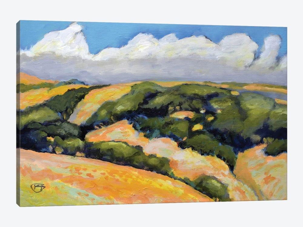 Clouds On Summer Hills by Kip Decker 1-piece Canvas Wall Art