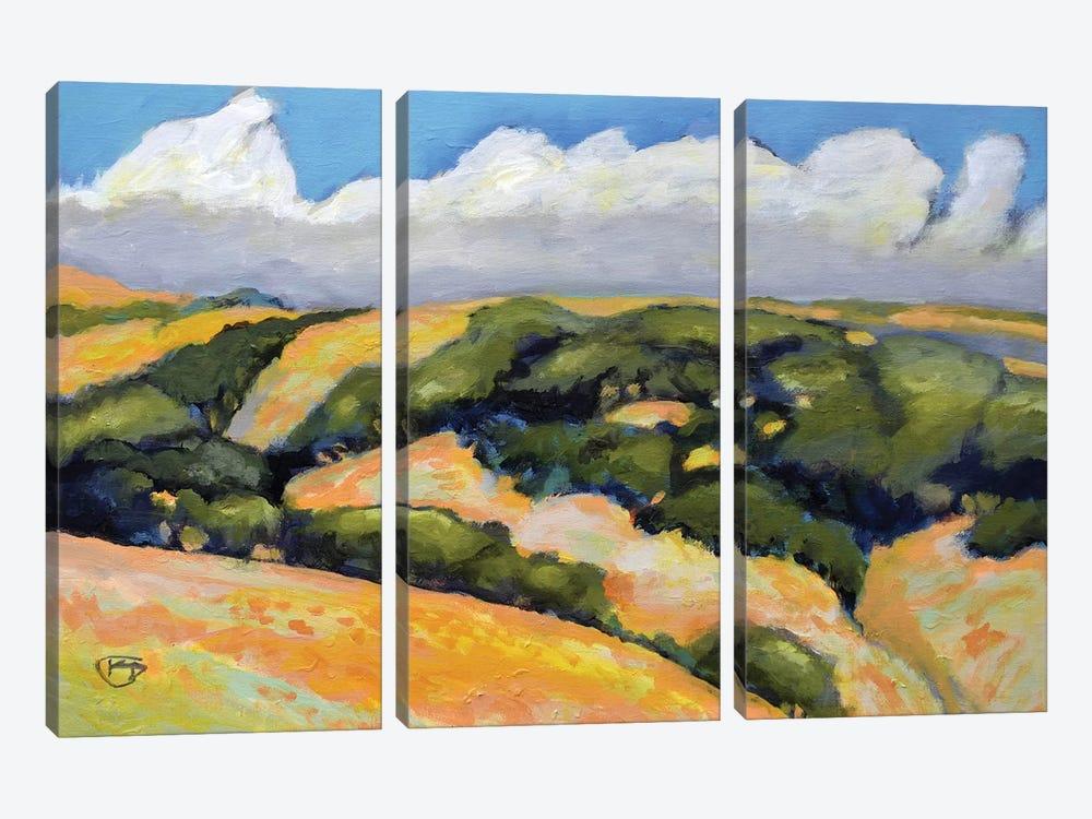 Clouds On Summer Hills by Kip Decker 3-piece Canvas Artwork