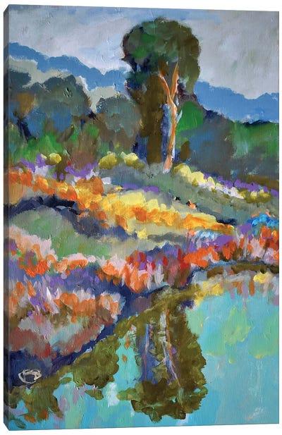 Country Pond Canvas Art Print