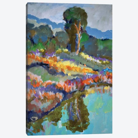 Country Pond Canvas Print #KIP12} by Kip Decker Art Print