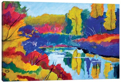 Upstate Pond Canvas Art Print