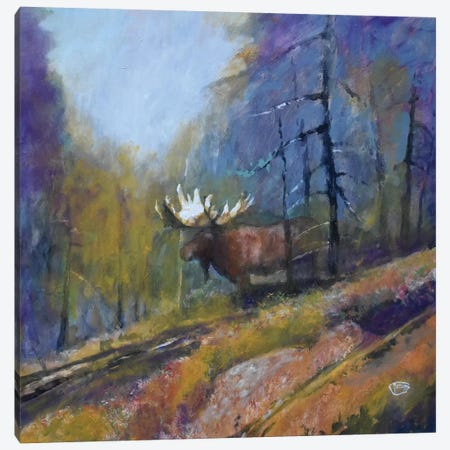 Bull Moose Canvas Print #KIP132} by Kip Decker Canvas Wall Art