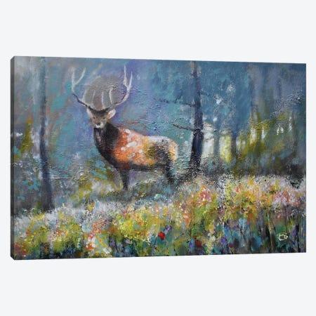 Edge Of Timber Canvas Print #KIP135} by Kip Decker Canvas Art Print