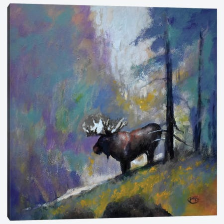 Majesty Canvas Print #KIP140} by Kip Decker Canvas Print