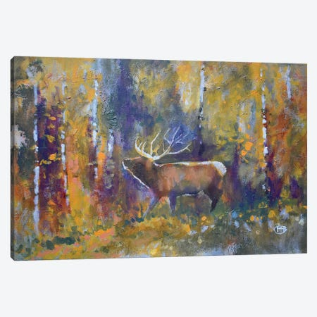 Nose In The Wind Canvas Print #KIP143} by Kip Decker Canvas Print