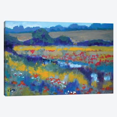 Field Poppies Near Pond Canvas Print #KIP149} by Kip Decker Canvas Print