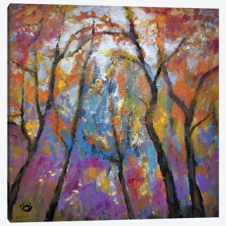 First Frost Canvas Print #KIP14} by Kip Decker Canvas Wall Art