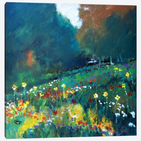 Up The Glen Canvas Print #KIP150} by Kip Decker Canvas Art
