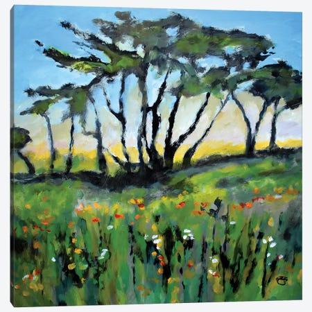 Green Field Canvas Print #KIP159} by Kip Decker Canvas Art