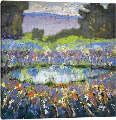 Foothills Pond Canvas Print #KIP16