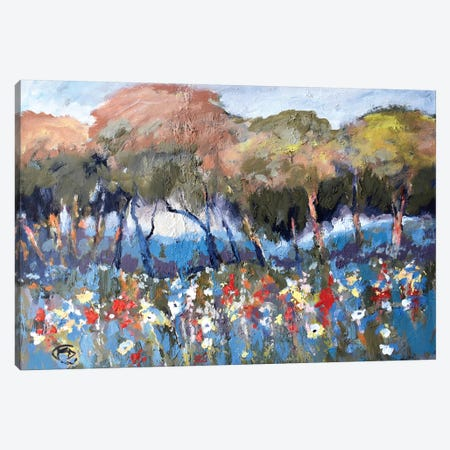 Hillcrest Flowers Canvas Print #KIP19} by Kip Decker Art Print