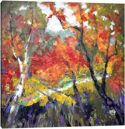 A Creek Runs Through It Canvas Art Print
