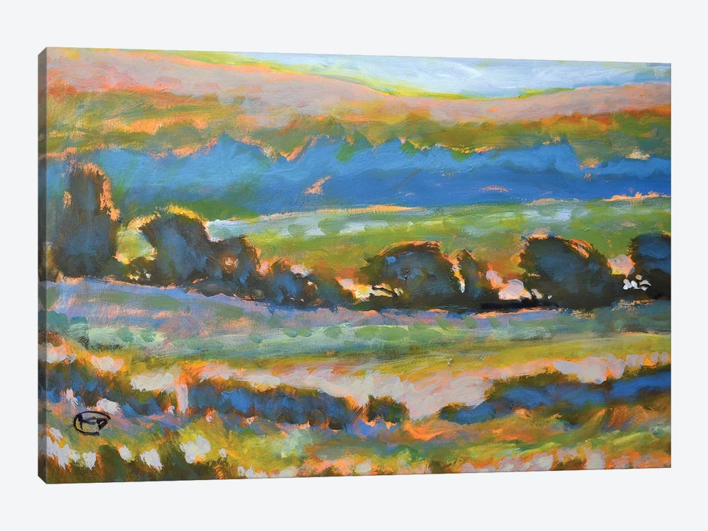 Hillside View by Kip Decker 1-piece Canvas Art