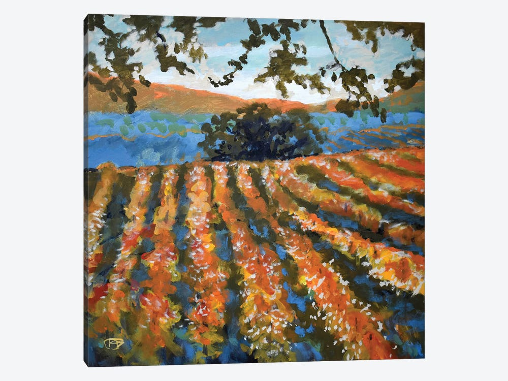 Late Afternoon Vineyard 1-piece Canvas Art Print