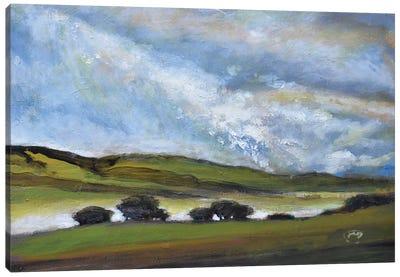 Light On Green Hills Canvas Art Print