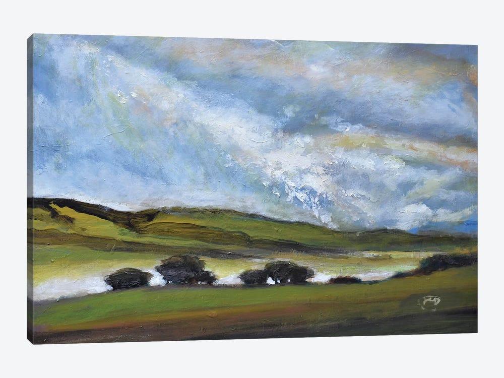 Light On Green Hills by Kip Decker 1-piece Canvas Art