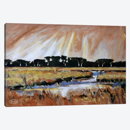 Light Over A Marsh Canvas Print #KIP23} by Kip Decker Canvas Art