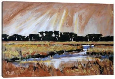 Light Over A Marsh Canvas Print #KIP23