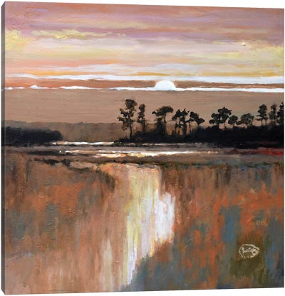 Low Country Moonrise Canvas Art Print