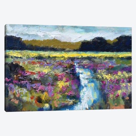 Lowland Creek Canvas Print #KIP25} by Kip Decker Art Print