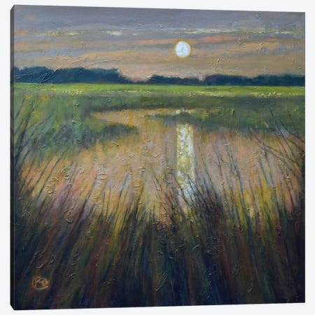 Moon Over The Marsh Canvas Print #KIP28} by Kip Decker Canvas Artwork