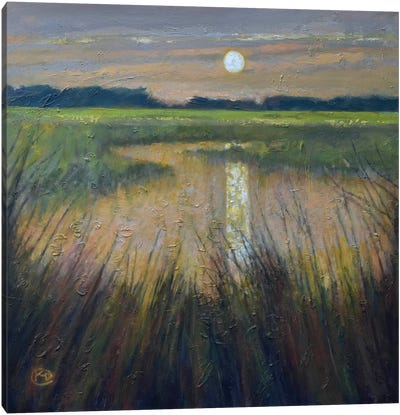 Moon Over The Marsh Canvas Print #KIP28