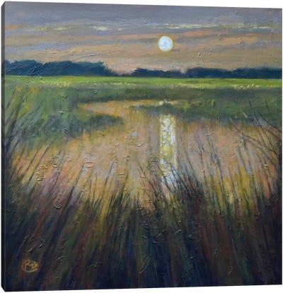 Moon Over The Marsh Canvas Art Print