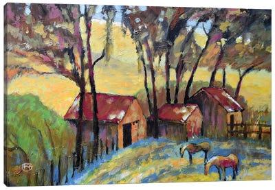 Old Ranch Canvas Art Print