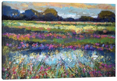 Pasture Sunrise Canvas Art Print