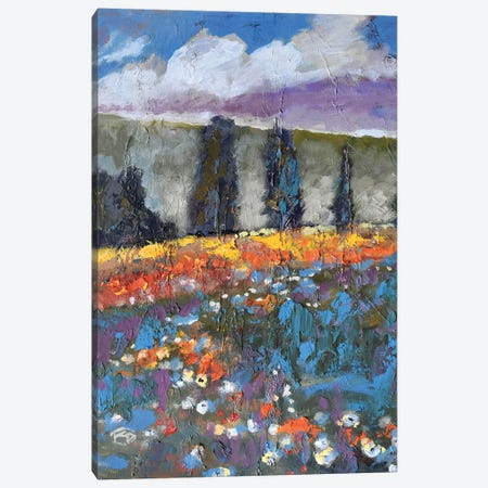 Poppies On A Hill Canvas Print #KIP34} by Kip Decker Canvas Wall Art