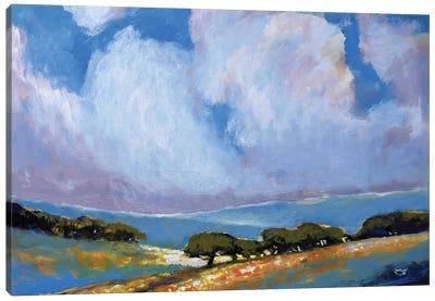 Spring Clouds Canvas Art Print