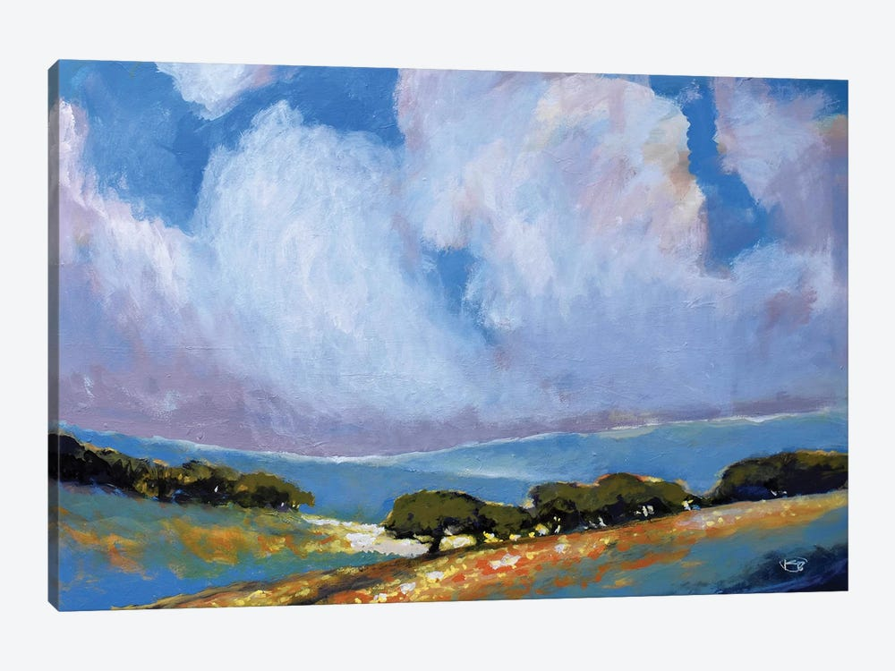 Spring Clouds by Kip Decker 1-piece Canvas Wall Art