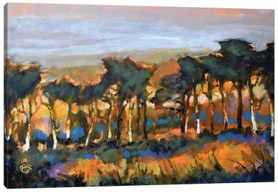 Standing Tall Canvas Print #KIP38