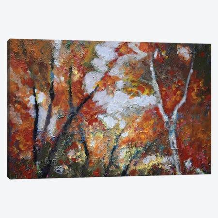 Autumn Majesty Canvas Print #KIP3} by Kip Decker Canvas Artwork