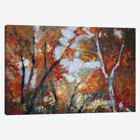 Autumn Majesty Canvas Print #KIP3} by Kip Decker Canvas Artwork