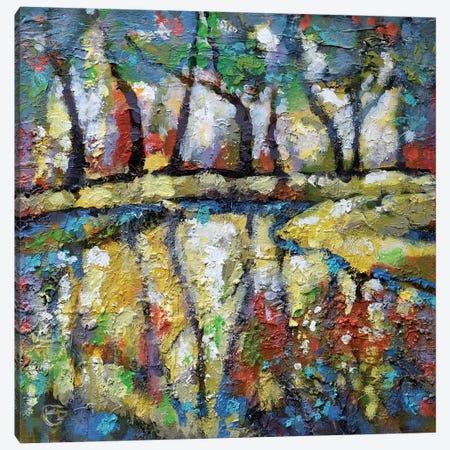 Summer Creek Canvas Print #KIP40} by Kip Decker Canvas Art
