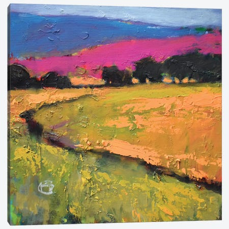Summer Hills Canvas Print #KIP41} by Kip Decker Canvas Art