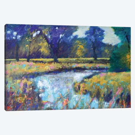 Summer Stream Canvas Print #KIP42} by Kip Decker Canvas Artwork