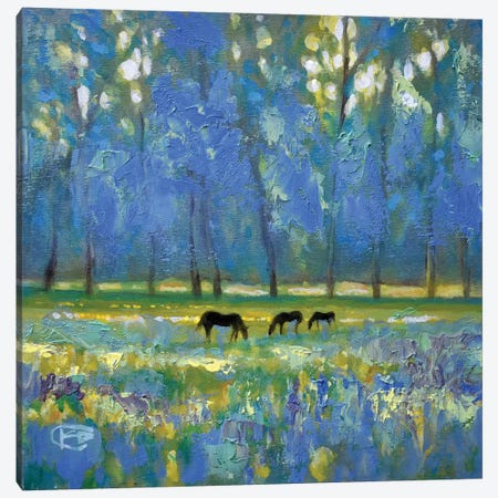 Three Mares Canvas Print #KIP43} by Kip Decker Canvas Art