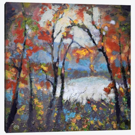 Through The Trees Canvas Print #KIP44} by Kip Decker Art Print