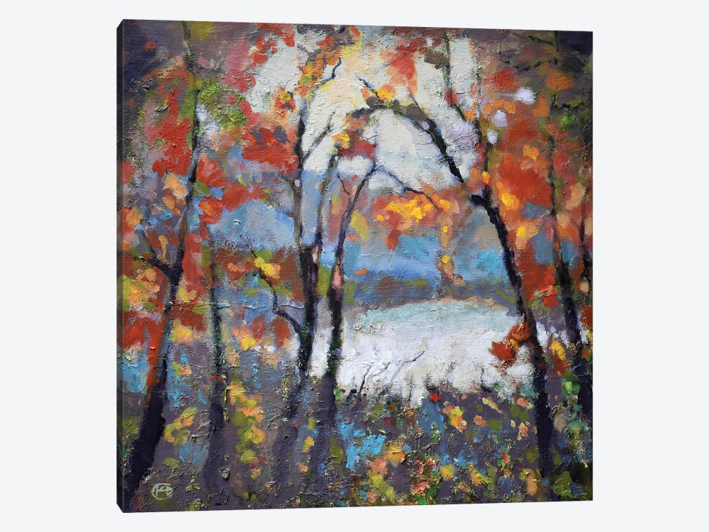Through The Trees by Kip Decker 1-piece Canvas Wall Art