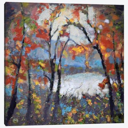 Through The Trees Canvas Print #KIP44} by Kip Decker Art Print