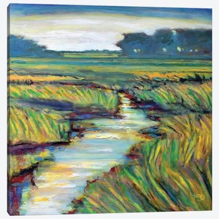 Tidal Creek Canvas Print #KIP45} by Kip Decker Canvas Print