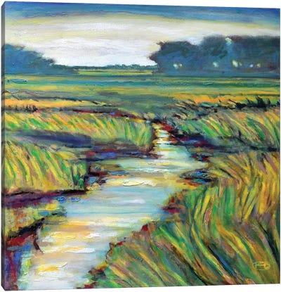 Tidal Creek Canvas Print #KIP45