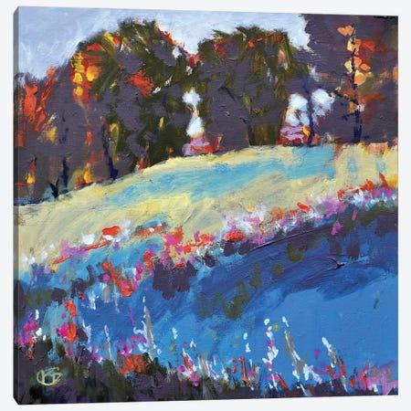 Trees On A Hillside Canvas Print #KIP46} by Kip Decker Canvas Print