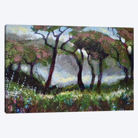 Woodland Light Canvas Print #KIP47} by Kip Decker Art Print